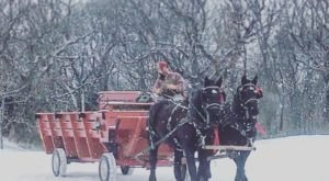 Take A Horse-Drawn Sleigh Ride Through A Winter Wonderland In Iowa At Jester Park