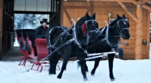 See The Charming Town Of Trego In Montana Like Never Before On This Delightful Sleigh Ride