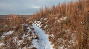 Horse Thief Trail Is A 2-Mile Kansas Hike That's Surprisingly Beautiful In The Wintertime