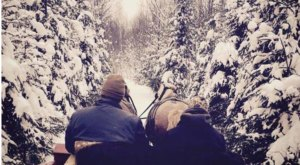 Experience The Magic Of Winter On These 9 Wisconsin Sleigh Rides