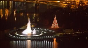 The Tree Of Lights In Pittsburgh Will Celebrate Its Final Year In 2020, And You Don't Want To Miss It