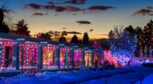 The Garden Christmas Lights Display At Denver Botanic Gardens In Colorado Is Pure Holiday Magic