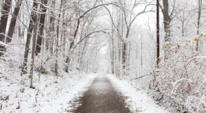 Nichols Arboretum In Michigan Is The Most Picturesque Place For A Winter Walk
