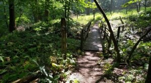 The Braille Trail, An ADA-Accessible Trail In Pittsburgh, Is A Hike Everyone Will Enjoy