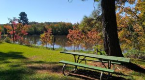 With Over 150 Acres, It's No Wonder Kiroli Park Is One Of The Best Parks In Louisiana