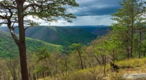 Sweeping Views Await Along The Beautiful Fred Woods Trail In Pennsylvania