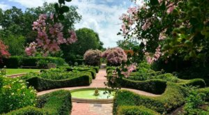 This Beautiful 10-Acre Botanical Garden In New Orleans Is A Sight To Be Seen
