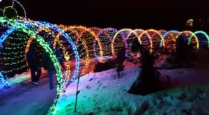The WPS Garden Of Lights In Wisconsin Is A Magical Wintertime Experience