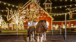 Drive Through Thousands Of Holiday Lights At Warm Springs Ranch In Missouri