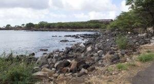Swim With Sea Life In An Abandoned Harbor At Mahukona Beach In Hawaii