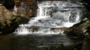 Pigeon Run Falls Trail In Pennsylvania Is An Easy And Beautiful Hike That Leads To A Breathtaking Waterfall
