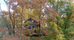 Sleep Among Towering Red Maple And White Oak Trees At The Maple Oak Treehouse In Illinois
