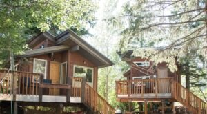 Sleep Among Towering Trees At These Heated Treehouses In Idaho
