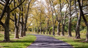 Duke Farms Is A Scenic Outdoor Spot In New Jersey That's A Nature Lover's Dream Come True