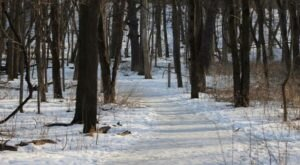 Hartman Reserve Nature Center In Iowa Is A Picture-Perfect Place For Your First Hike Of The New Year