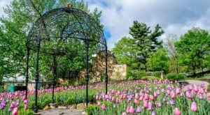 Pittsburgh Botanic Garden Is A Fascinating Spot In Pittsburgh That's Straight Out Of A Fairy Tale