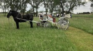 See The Charming Town Of Abilene In Kansas Like Never Before On This Delightful Carriage Ride