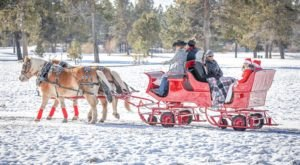 See The Charming Community Of Sunriver In Oregon Like Never Before On This Delightful Sleigh Ride