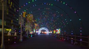 Even The Grinch Would Marvel At The Holiday Lights Display Along The Virginia Beach Boardwalk