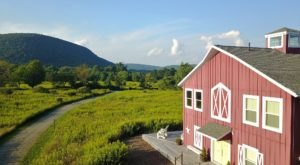 The Mountain Horse Farm Bed and Breakfast Is One Of The Most Charming Getaways In New York