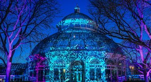 This Botanical Garden Holiday Light Display Is One Of The Most Beautiful In New York
