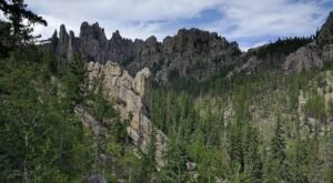 The Next Time You Visit South Dakota's Black Hills, Look Out For These 7 Surprising Things