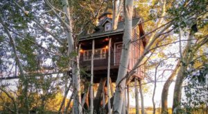 Cross A 70-Foot Suspension Bridge To This Adorable Utah Treehouse