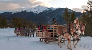 See The Charming Town Of Breckenridge In Colorado Like Never Before On This Delightful Sleigh Ride
