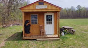 Spend The Night On An Alpaca Farm In This Cozy Tiny House AirBnb In Minnesota