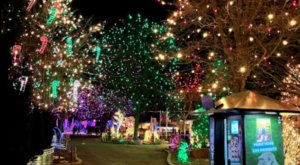 Zoo Lights, A Colorado Christmas Display, Has Been Named Among The Most Beautiful In The Country