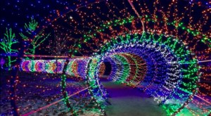Walk Through 45-Miles Of Holiday Lights At Scentsy Commons In Idaho