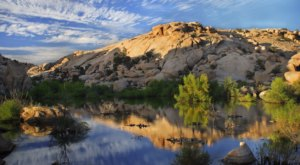Cottonwood Spring Nature Trail Is An Easy Hike In Southern California That Will Lead You Someplace Unforgettable
