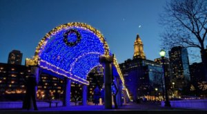Christopher Columbus Park's Trellis Is Lighting Up With Over 50,000 Lights This Season In Massachusetts