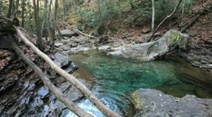 Virginia's Most Magical Natural Spring, Devil's Bathtub, Is Enchanting In The Winter