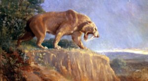 Huge Saber-Toothed Tigers Once Roamed West Virginia, But Now Just Their Bones Are Left