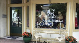 Indulge Your Sweet Tooth At Sugar Bears, A Charming Candy Store In North Carolina