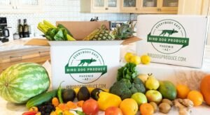 Bird Dog Produce Delivers Arizona-Grown Fruits And Veggies Straight To Your Door