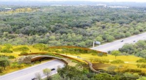 The Largest Wildlife Bridge In The U.S. Just Opened At Hardberger Park In Texas