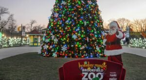 Holiday Magic At Brookfield Zoo In Illinois Will Make You Feel Like You're In The North Pole