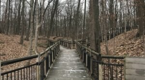 9 Totally Kid-Friendly Hikes In Metro Detroit That Are 1 Mile And Under