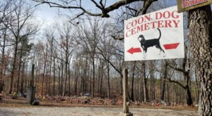 The World's Only Coon Dog Cemetery Is Hiding In Small Town Alabama And It's As Weirdly Wonderful As You'd Expect