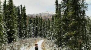 Hike Through The Fresh Alaskan Snowfall Along The River On The Lower Eagle River Trail