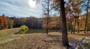 Bring A Pal And Take The Boardwalk Along Friendship Trail In Arkansas