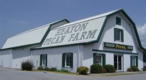 Enjoy Delicious Homemade Ice Cream, Pies, Candies, And More At Alabama's Heaton Pecan Farm