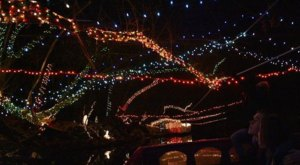 Float Through Thousands Of Christmas Lights On Utah's Provo River With CLAS Ropes Course