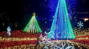 Zoolights Is Back During The Most Wonderful Time Of The Year At Lincoln Park Zoo In Illinois