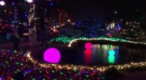 The Winter Nights Winter Lights In Illinois Is A Magical Wintertime Fairyland Experience