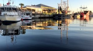 Watch Boats Roll By When You Dine At Rusty Bellies Waterfront Grill In Florida