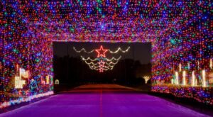 13 Drive-Thru Christmas Lights Displays In Texas The Whole Family Can Enjoy