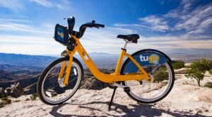 Rent A Bike For The Day And Explore The Arizona Desert Like Never Before